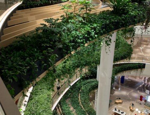 """空调、名牌和室内绿化——论""""高级商场""""的变迁"""