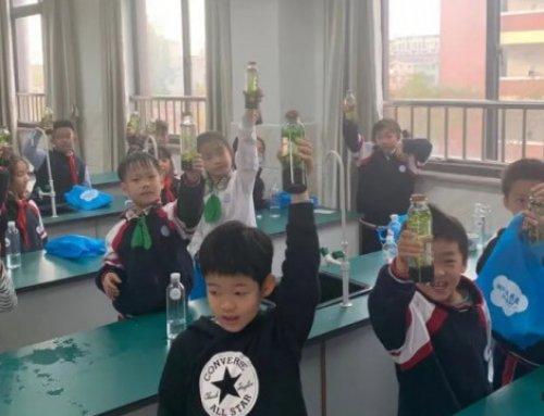 生态理念,就在我们身边——罗店中心校生态瓶DIY活动记录